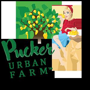Pucker Urban Farm – San Juan Capistrano, Ca